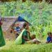 2021-06-23 Malaumanda Clinic Patrol.MandyGlassDSC06358